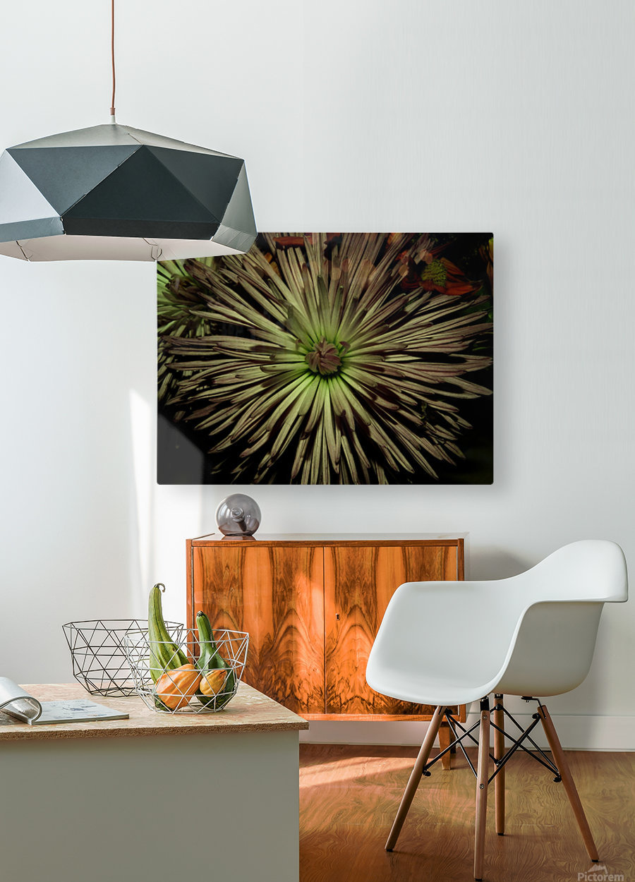 A (7)  HD Metal print with Floating Frame on Back