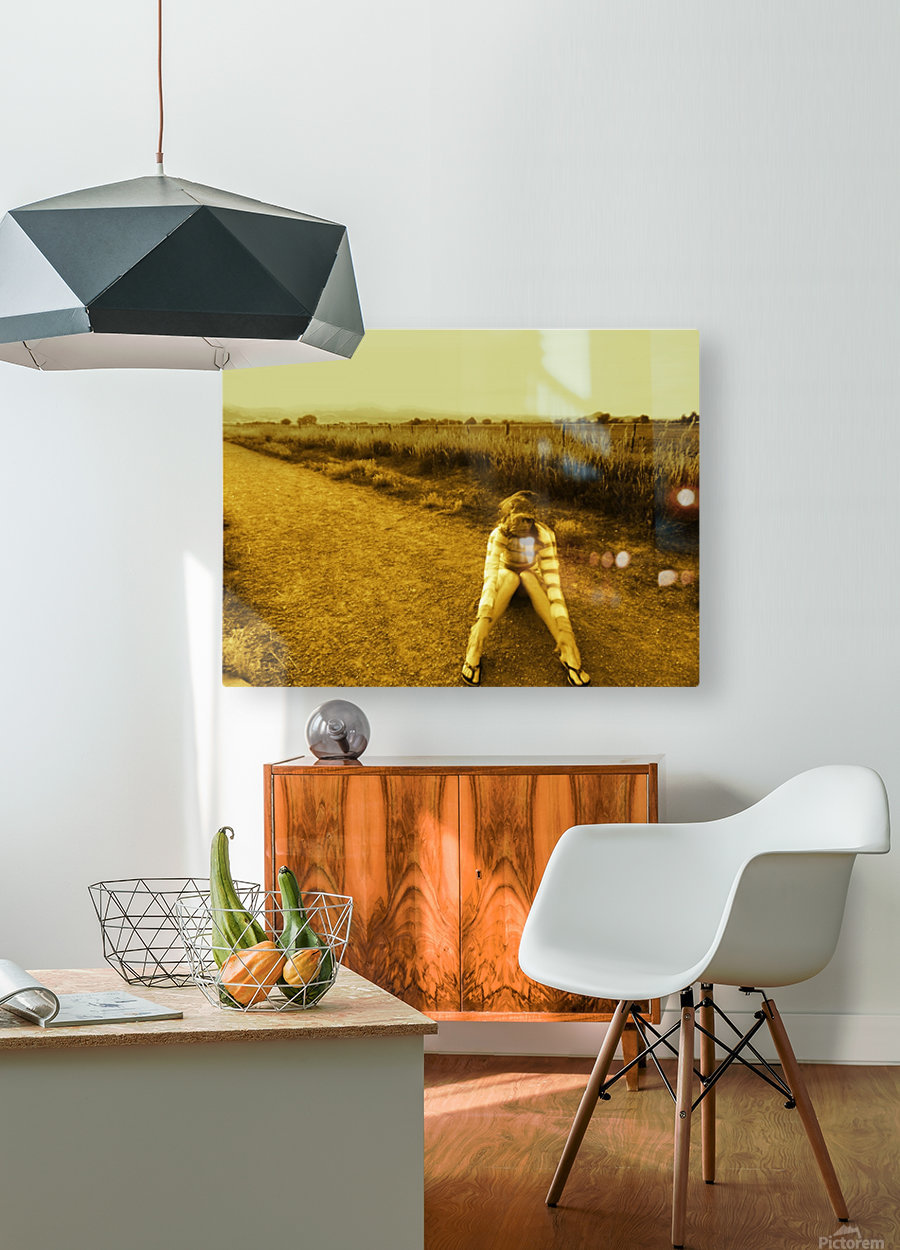 A (3)  HD Metal print with Floating Frame on Back