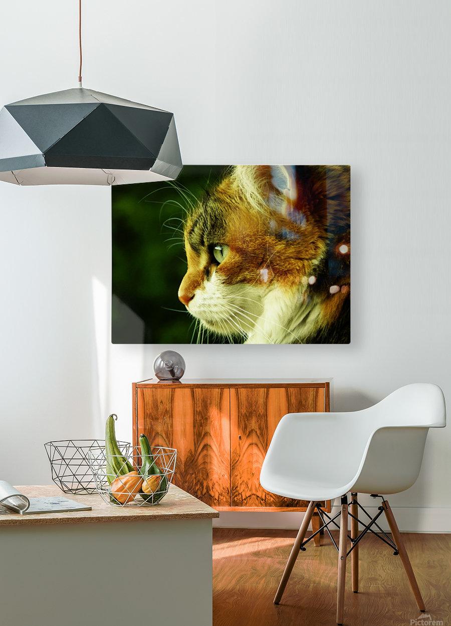 sofn-ECA50C68  HD Metal print with Floating Frame on Back