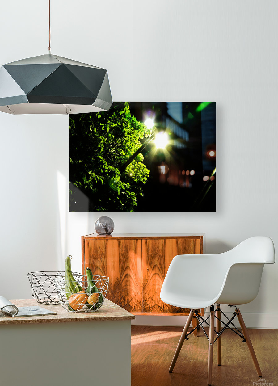 sofn-12072B59  HD Metal print with Floating Frame on Back