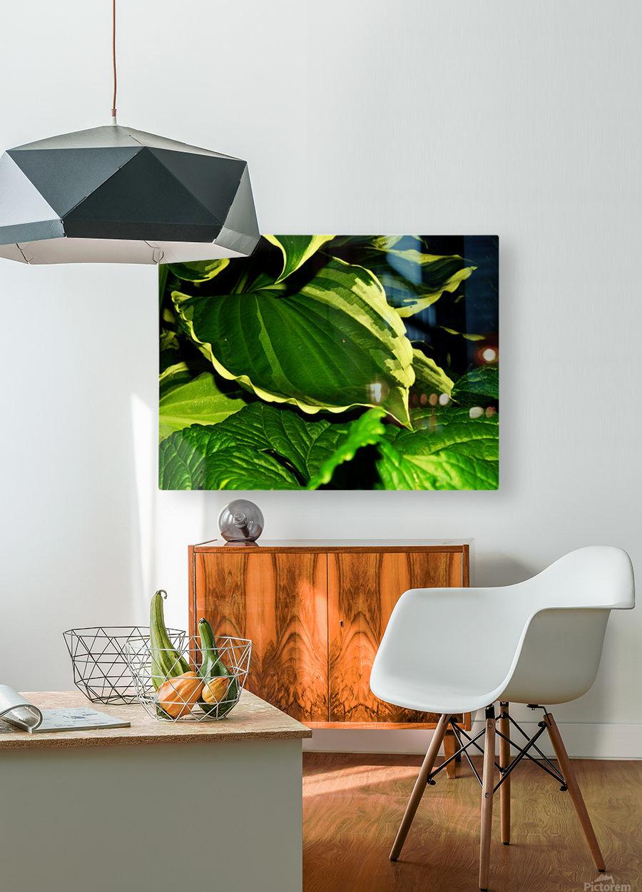 sofn-4312BAF0  HD Metal print with Floating Frame on Back