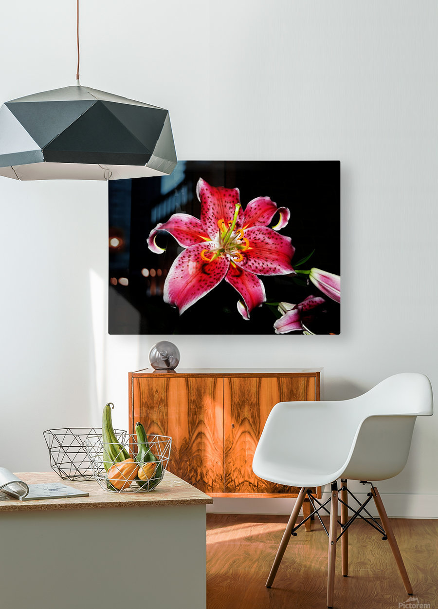 sofn-356C0972  HD Metal print with Floating Frame on Back