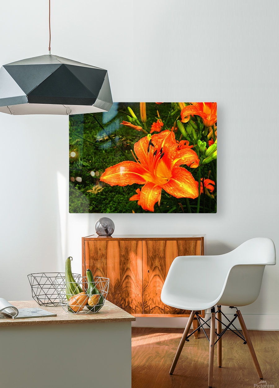 C (7)  HD Metal print with Floating Frame on Back