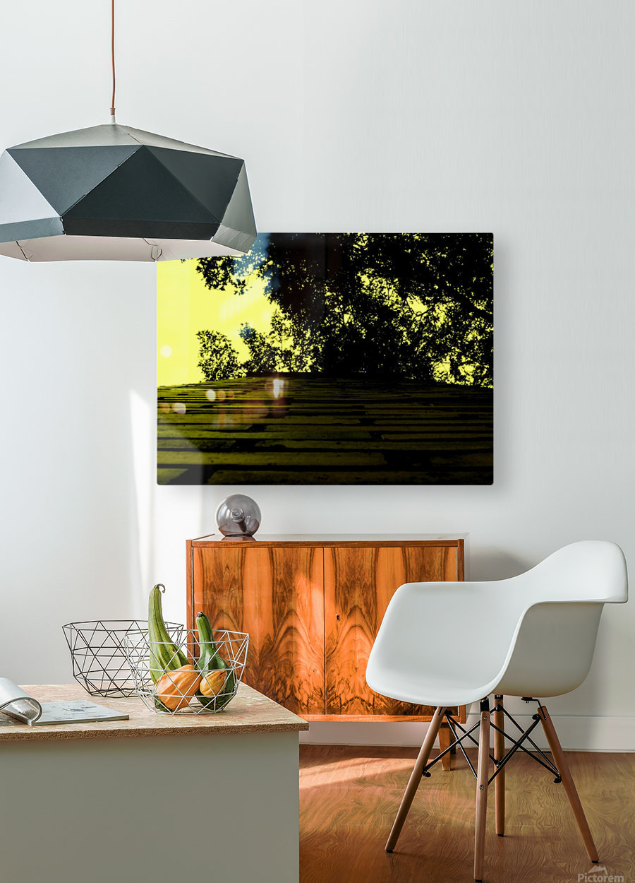 sofn-66E4BA18  HD Metal print with Floating Frame on Back