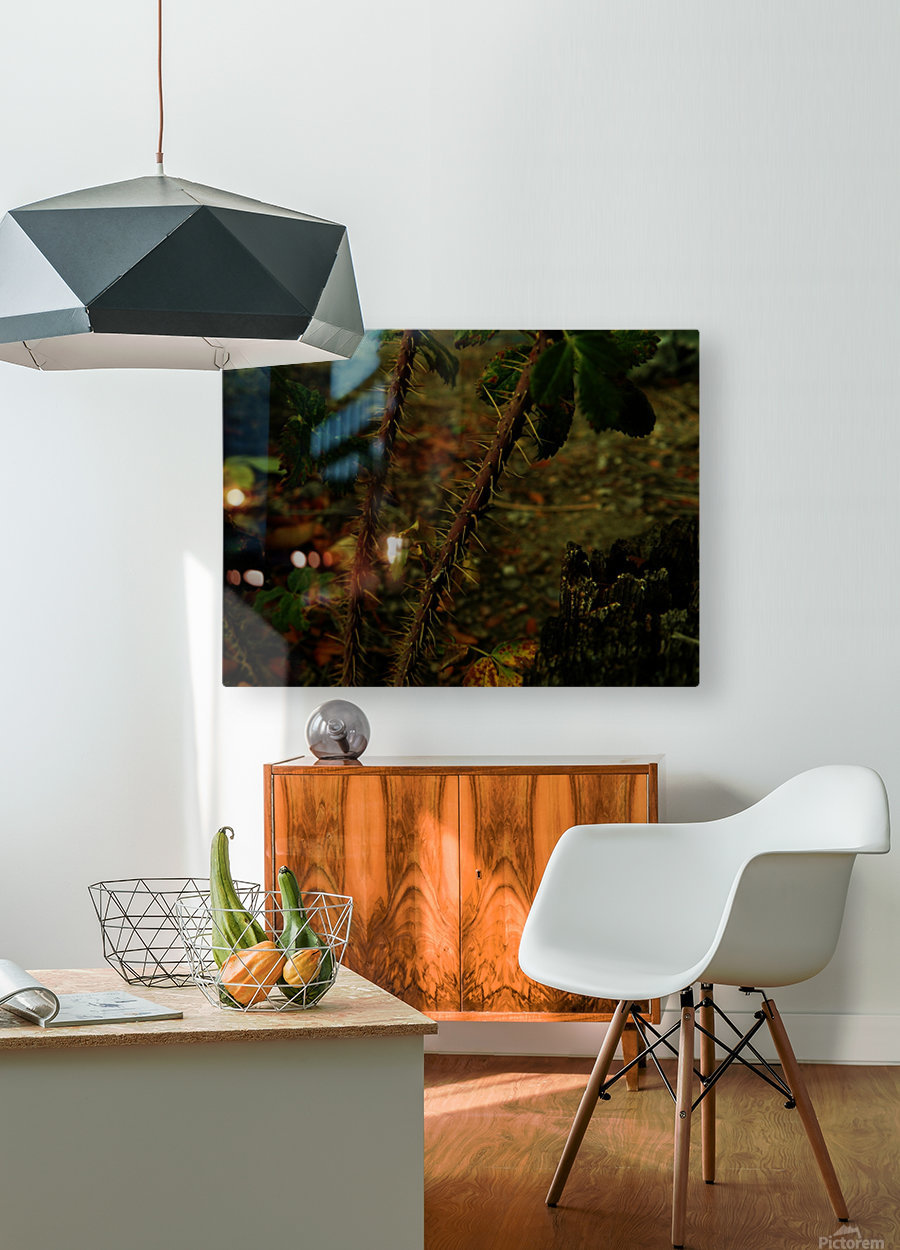 D (14)  HD Metal print with Floating Frame on Back