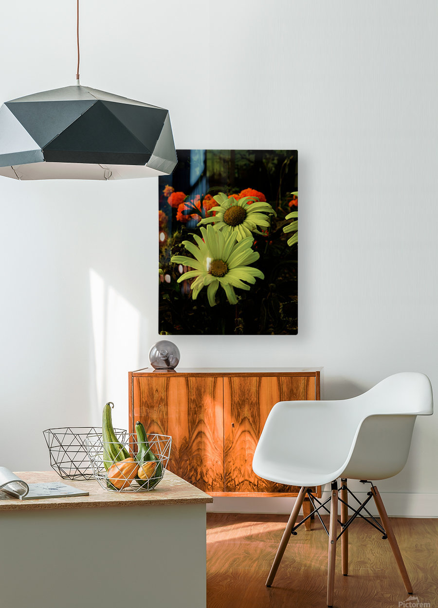 D (12)  HD Metal print with Floating Frame on Back