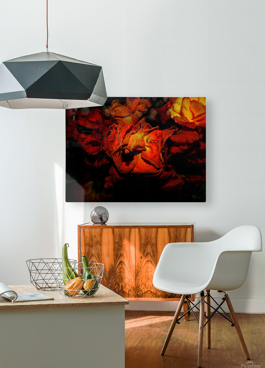 D (5)  HD Metal print with Floating Frame on Back