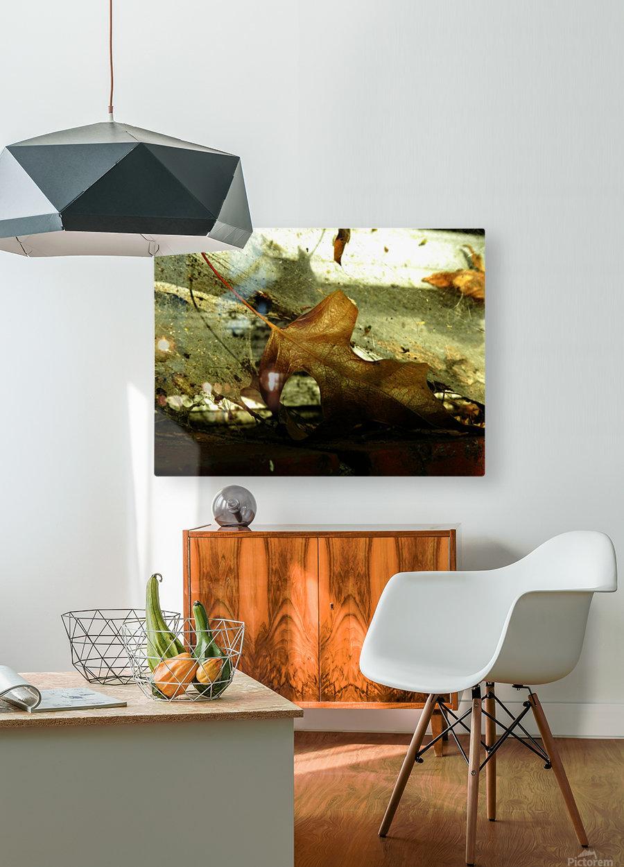 D (1)  Impression métal HD avec cadre flottant sur le dos