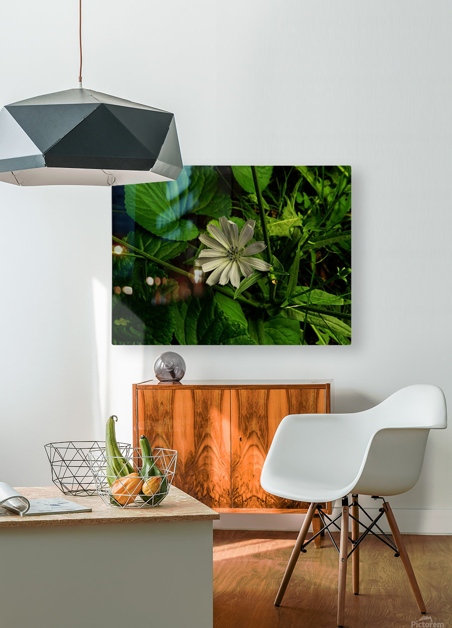 F (12)  HD Metal print with Floating Frame on Back