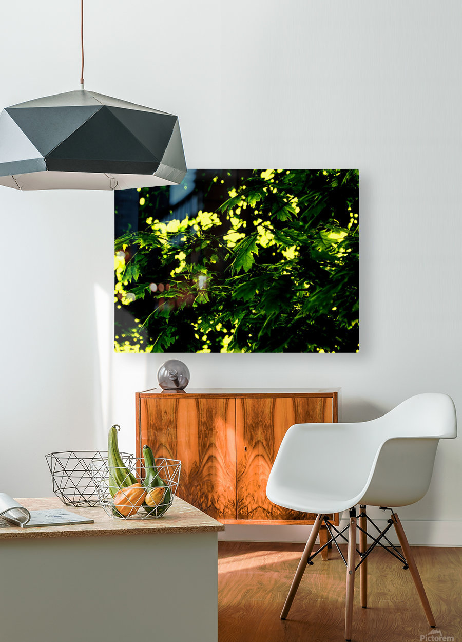 F (2)  HD Metal print with Floating Frame on Back