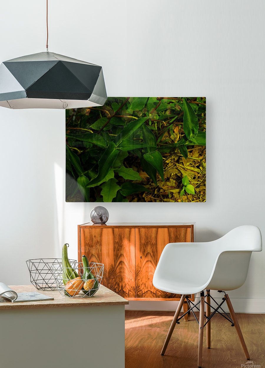 F (13)  HD Metal print with Floating Frame on Back