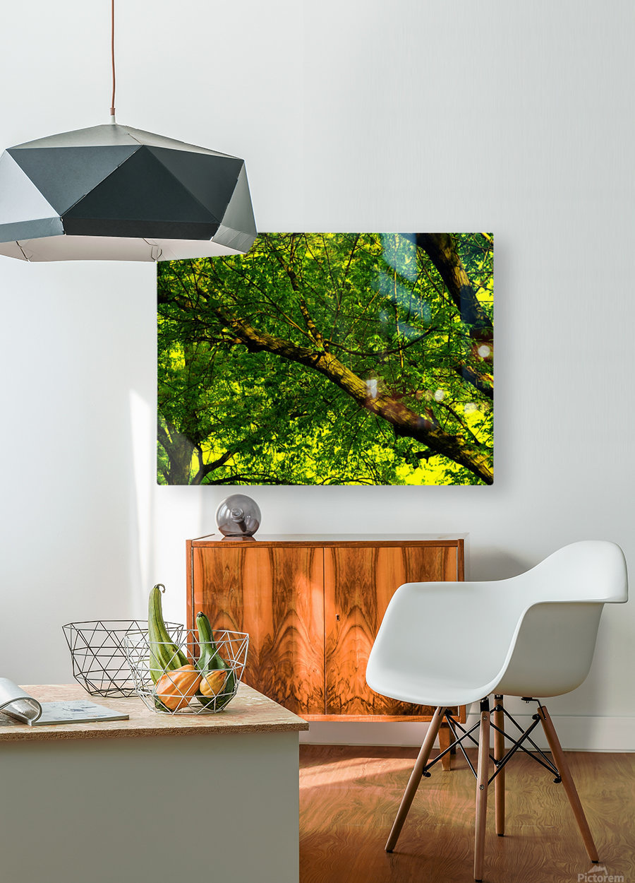 F (3)  HD Metal print with Floating Frame on Back