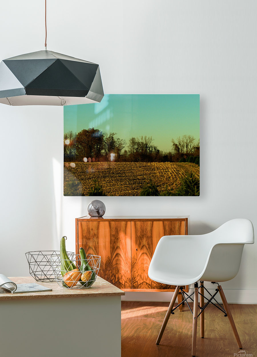 sofn-840D8D25  HD Metal print with Floating Frame on Back