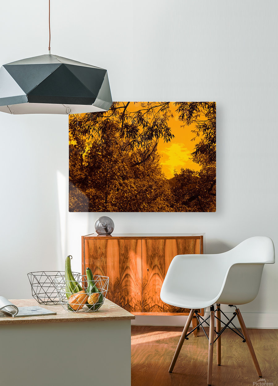 G (12)  HD Metal print with Floating Frame on Back