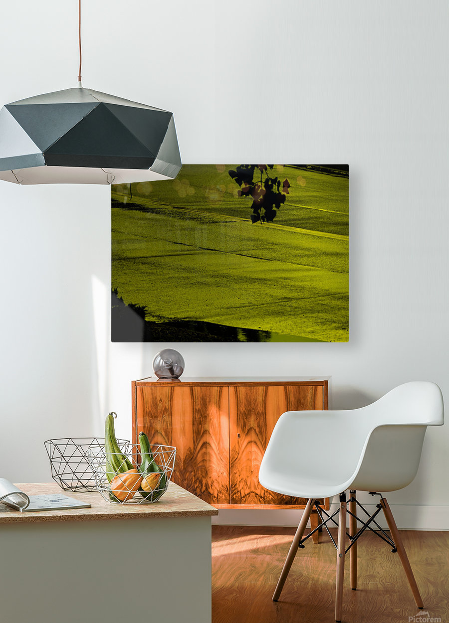sofn-330900A2  HD Metal print with Floating Frame on Back
