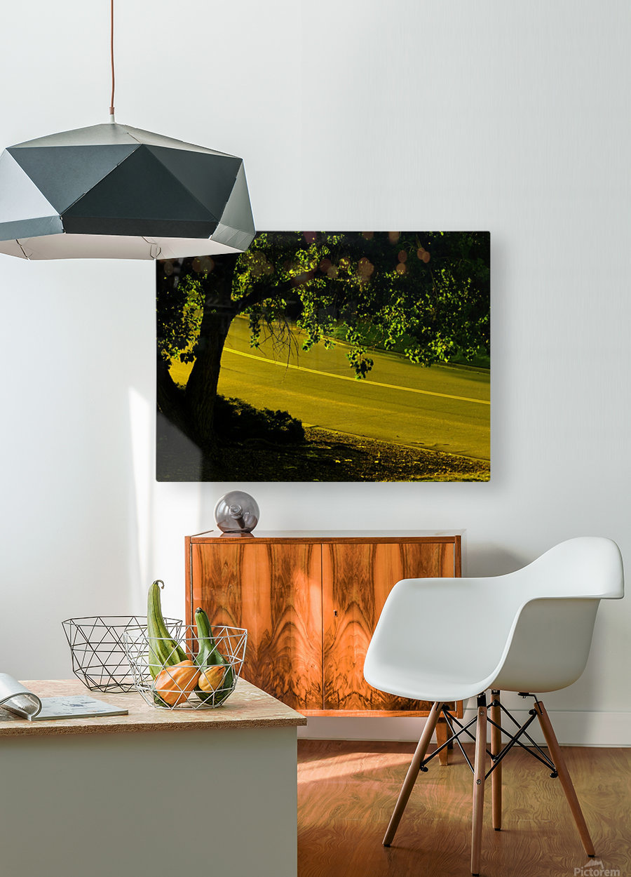 H (14)  HD Metal print with Floating Frame on Back
