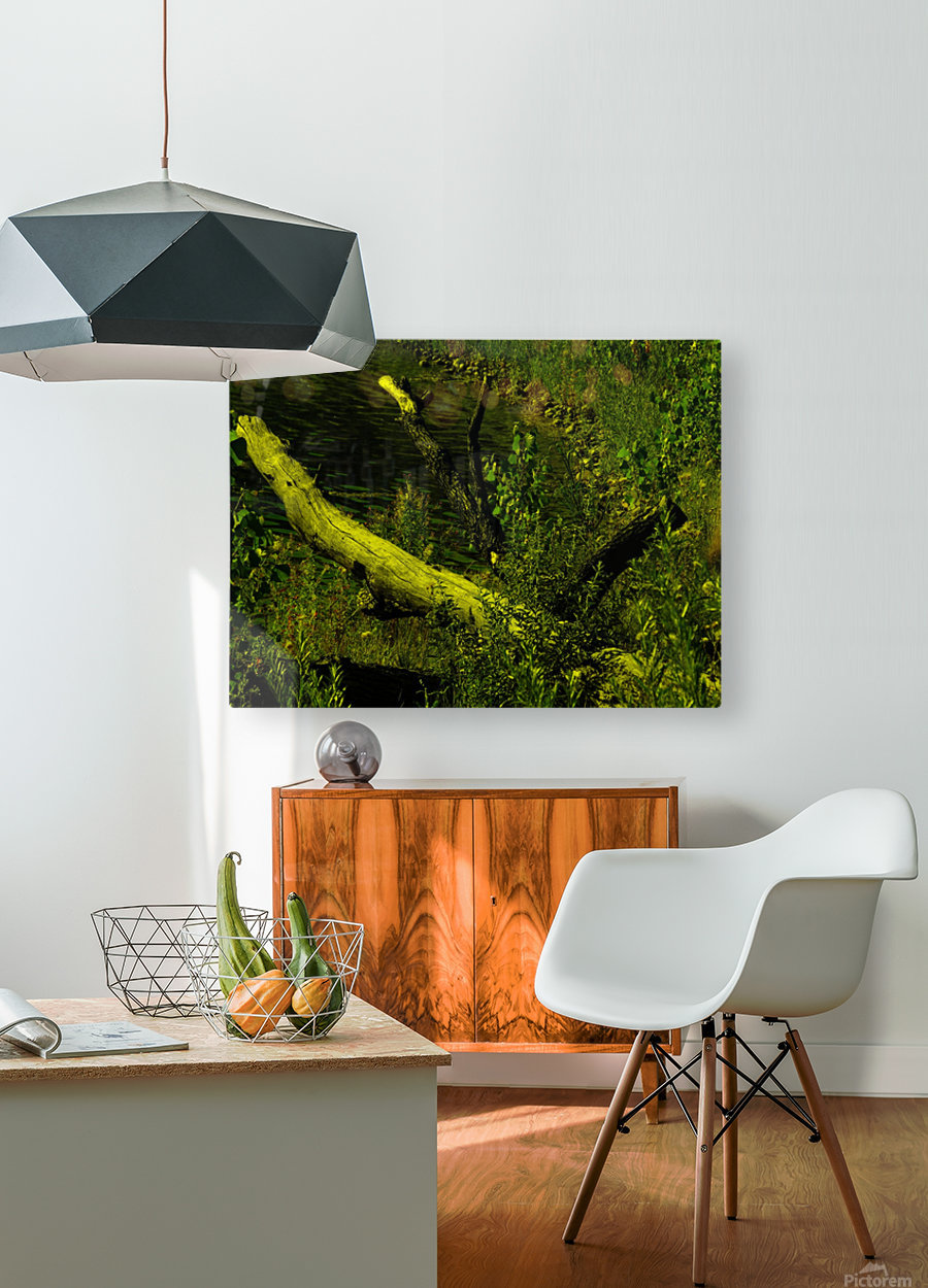 H (7)  HD Metal print with Floating Frame on Back