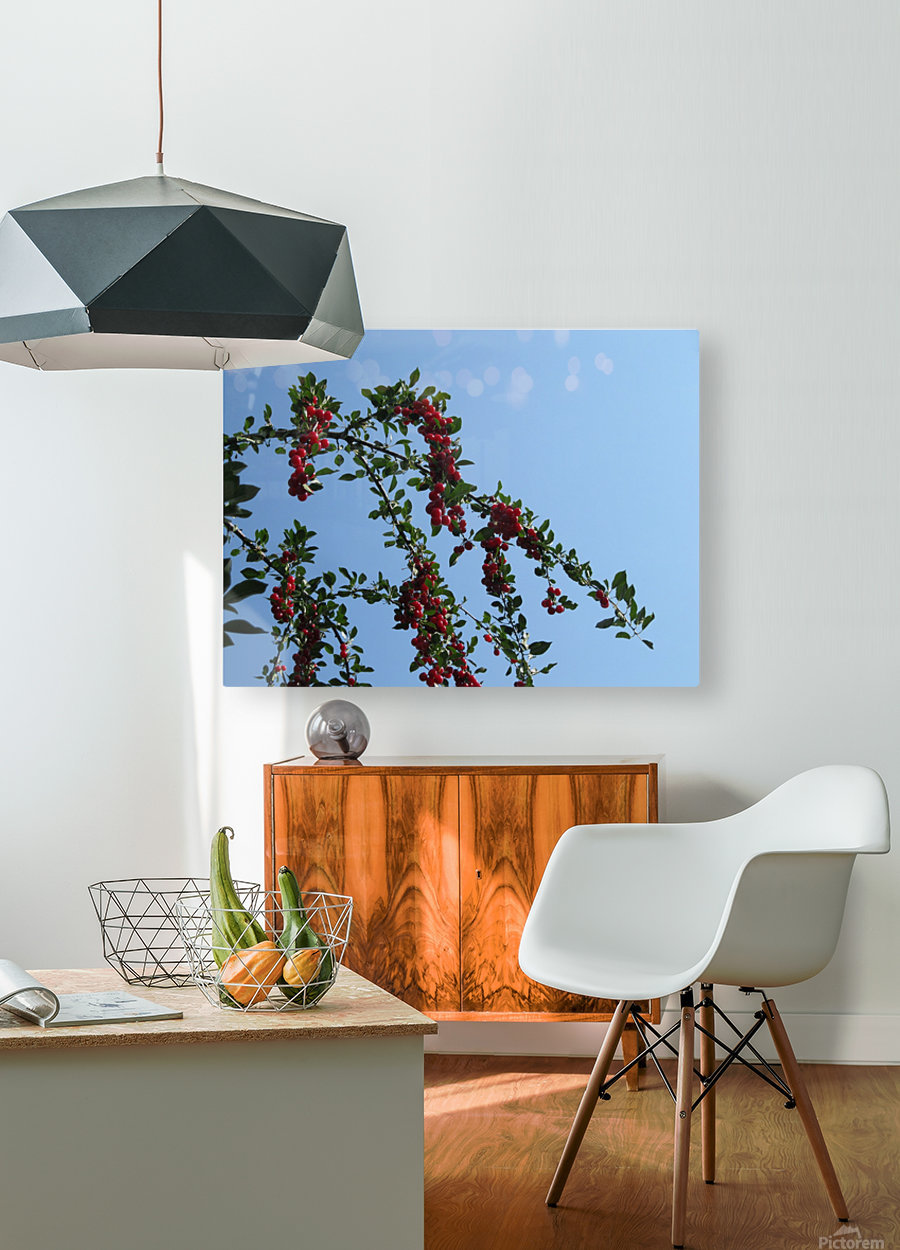 Summer Bounty  HD Metal print with Floating Frame on Back