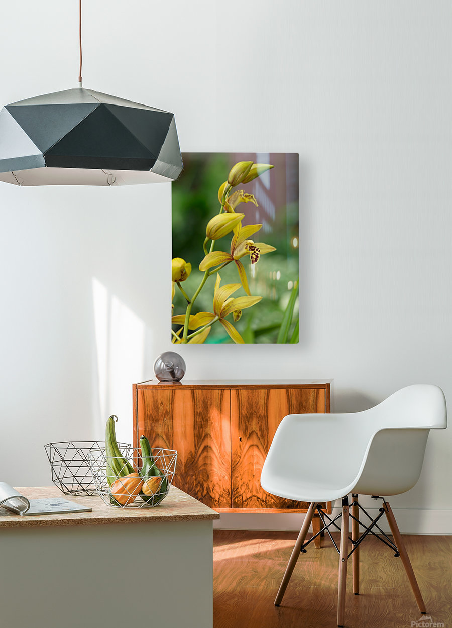 Yellow flowers stem  HD Metal print with Floating Frame on Back