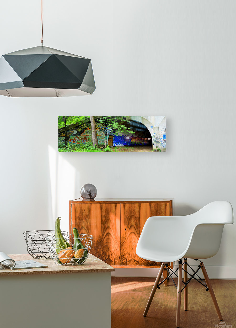 001460_Nikon_ 7 15 12RB3 1 resized  HD Metal print with Floating Frame on Back
