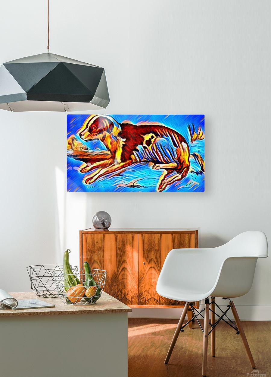 Dog_Splash_OSG  HD Metal print with Floating Frame on Back