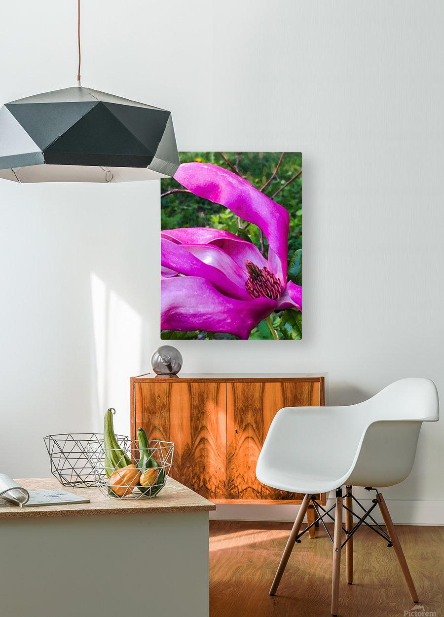 Peaceful pink   Impression métal HD avec cadre flottant sur le dos
