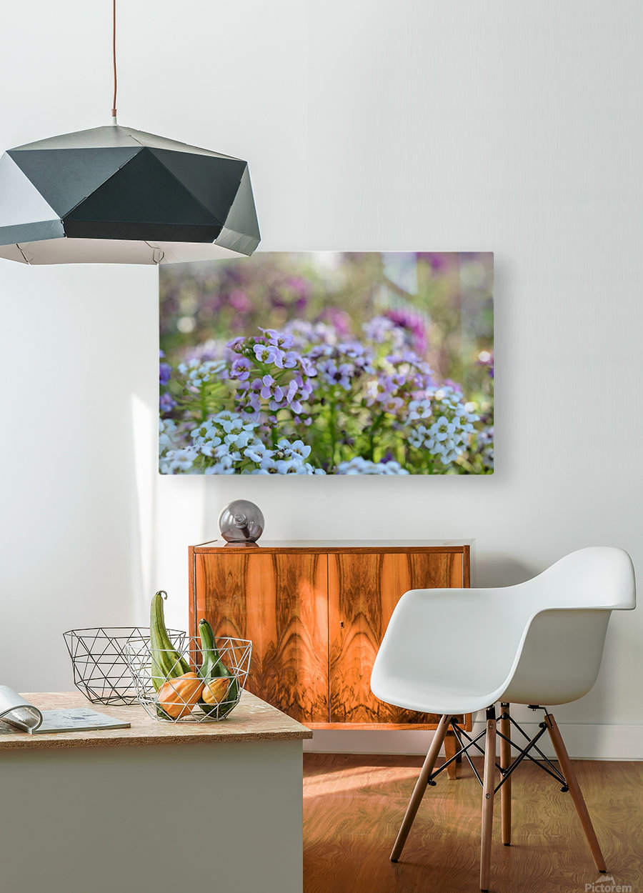 Small Purple Flowers Photograph  HD Metal print with Floating Frame on Back