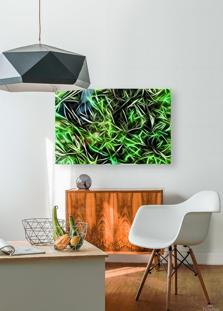 Interdigitate  HD Metal print with Floating Frame on Back