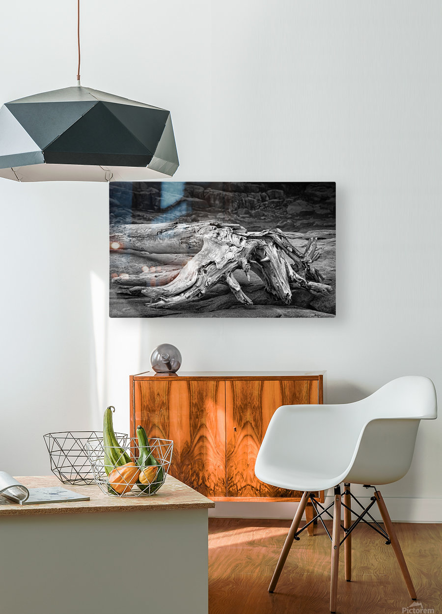 Run Aground - Echouer  HD Metal print with Floating Frame on Back