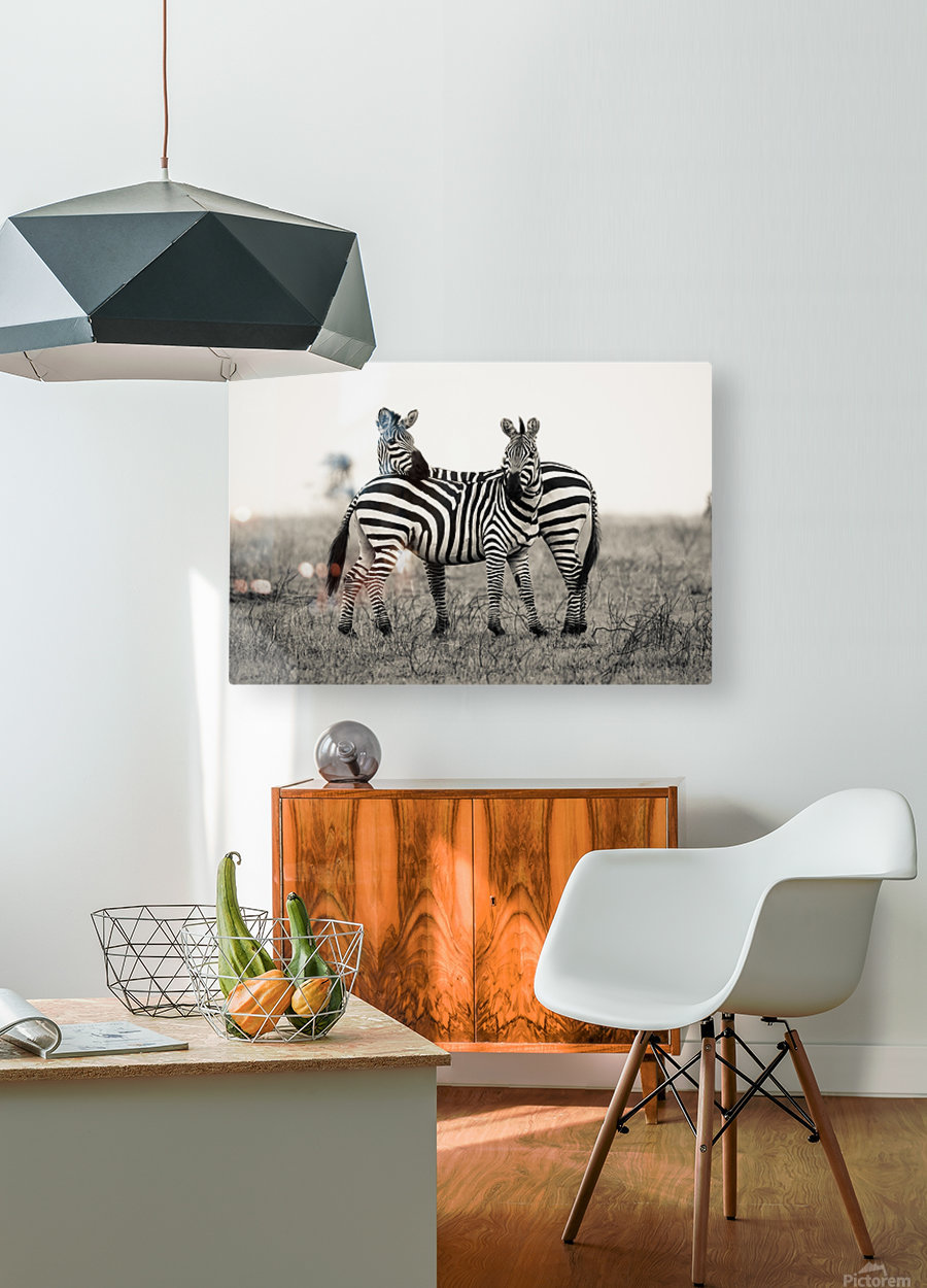 DUO  HD Metal print with Floating Frame on Back