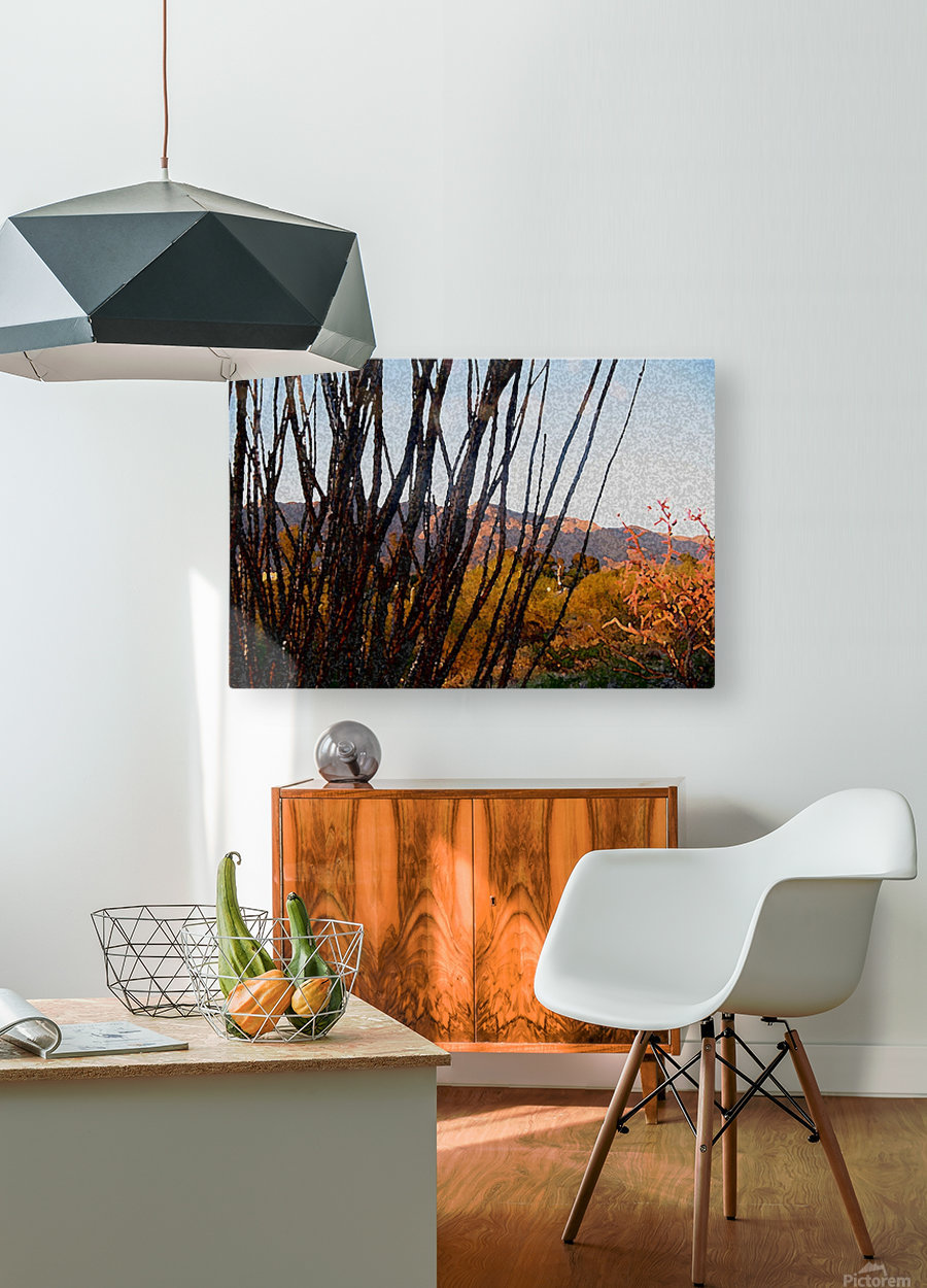 painted desert  HD Metal print with Floating Frame on Back
