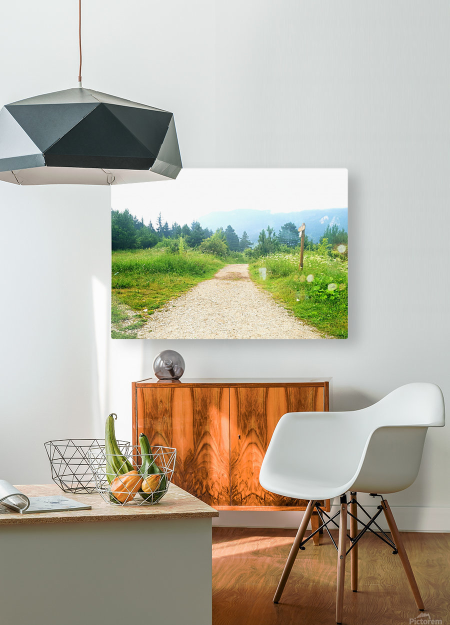 dream road  HD Metal print with Floating Frame on Back