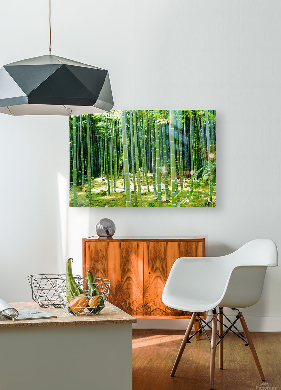 Bamboo Forest  HD Metal print with Floating Frame on Back
