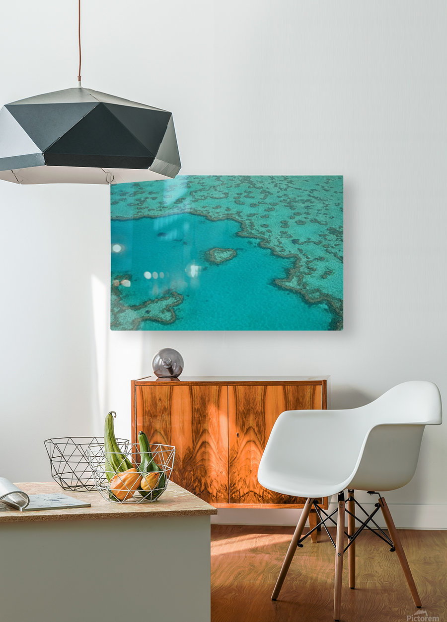 Love Reef  HD Metal print with Floating Frame on Back