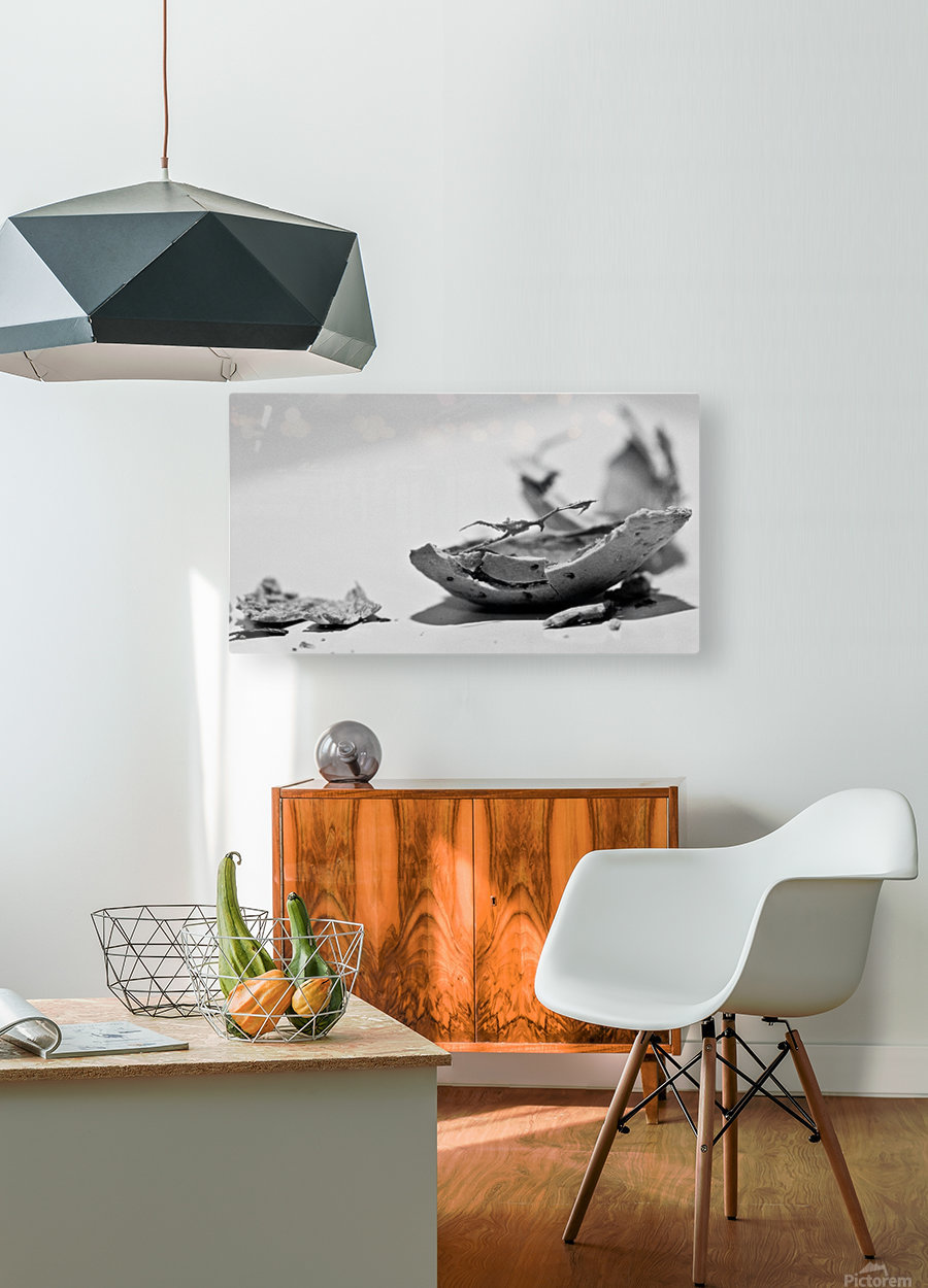 Humanity 046  HD Metal print with Floating Frame on Back