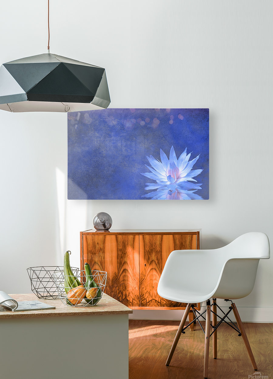 Lotus Blossom  HD Metal print with Floating Frame on Back