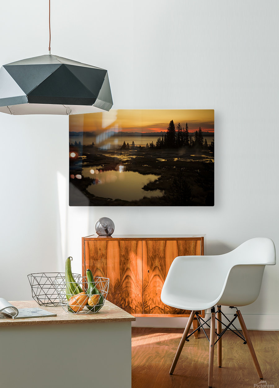 _S9A2665  HD Metal print with Floating Frame on Back