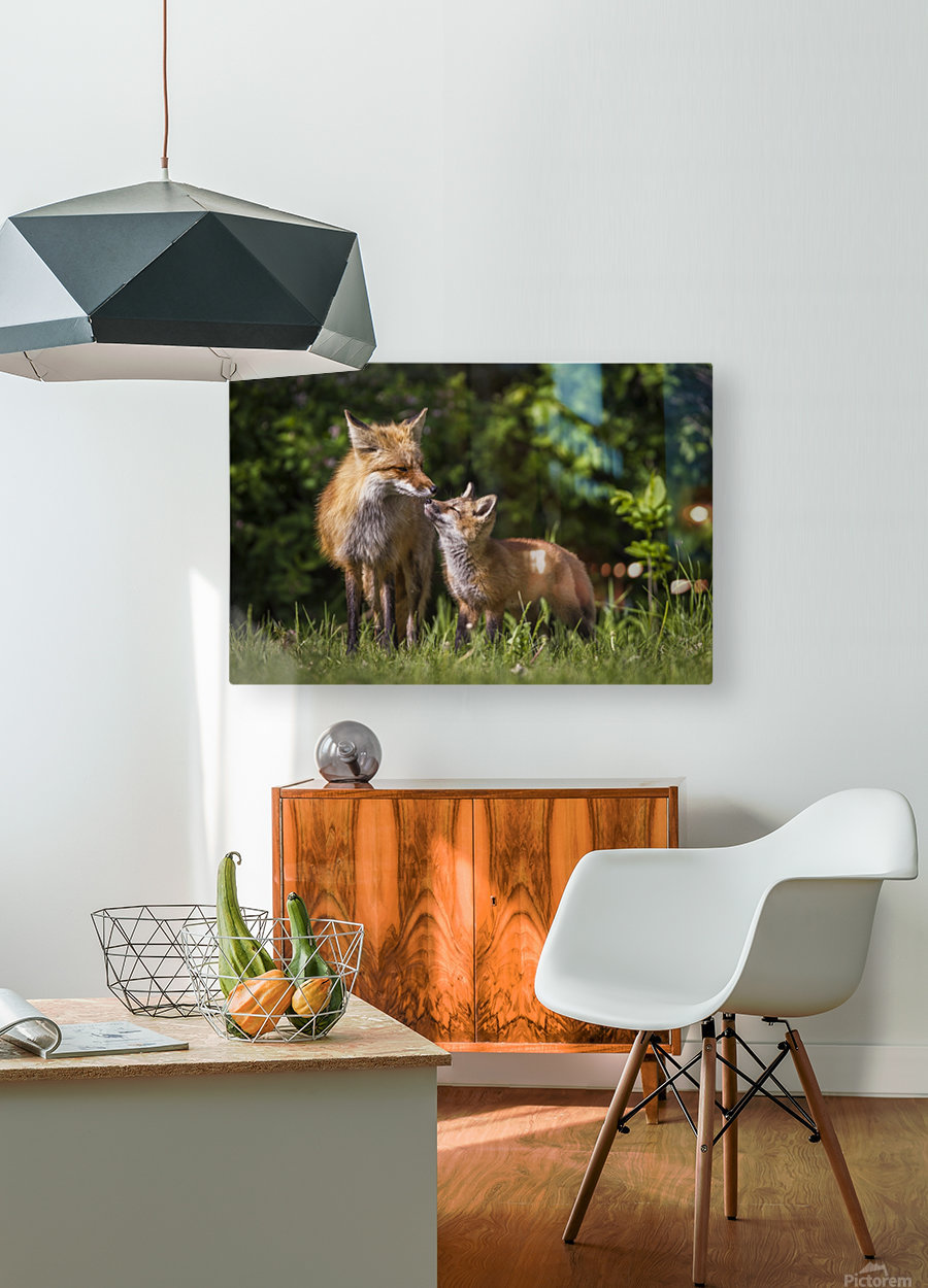 Motherly Love- 2  HD Metal print with Floating Frame on Back