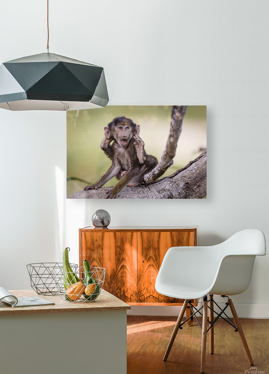 Hands-up  HD Metal print with Floating Frame on Back