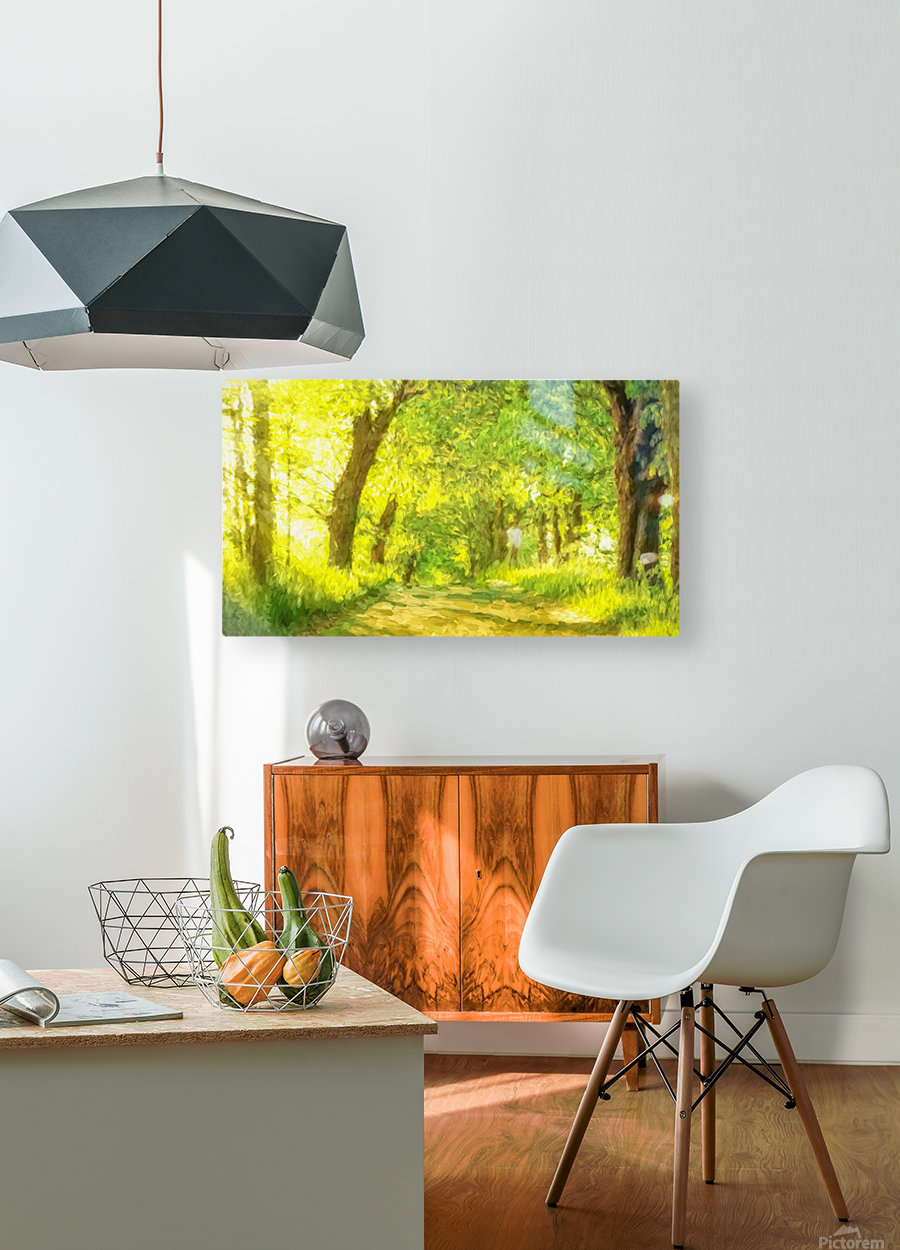 Walk in the Woods  HD Metal print with Floating Frame on Back