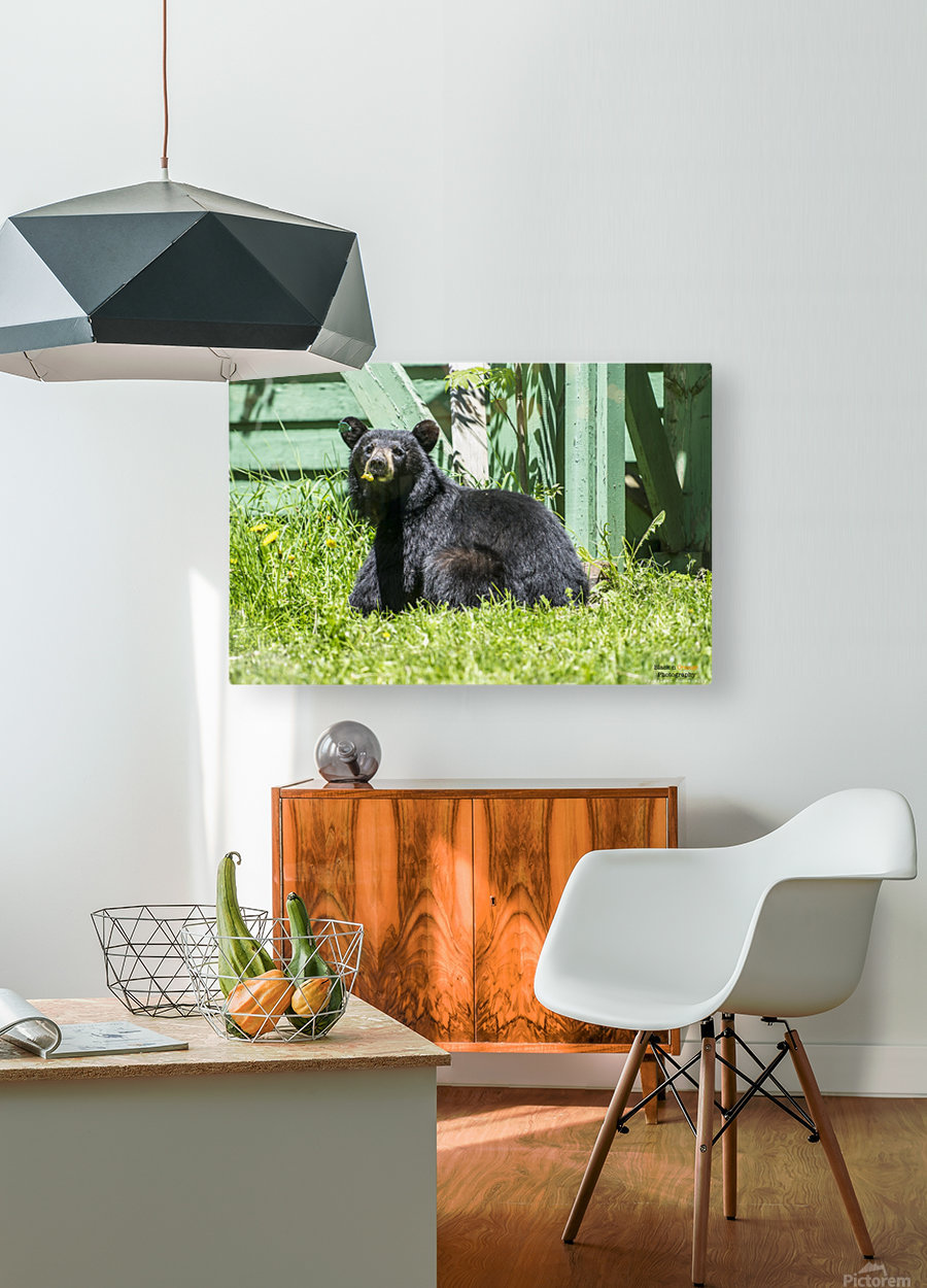 1 11  HD Metal print with Floating Frame on Back