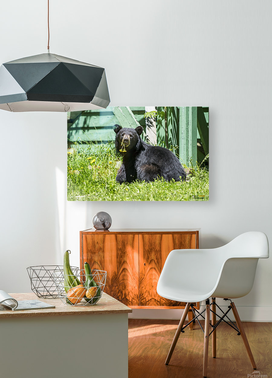 1 5  HD Metal print with Floating Frame on Back