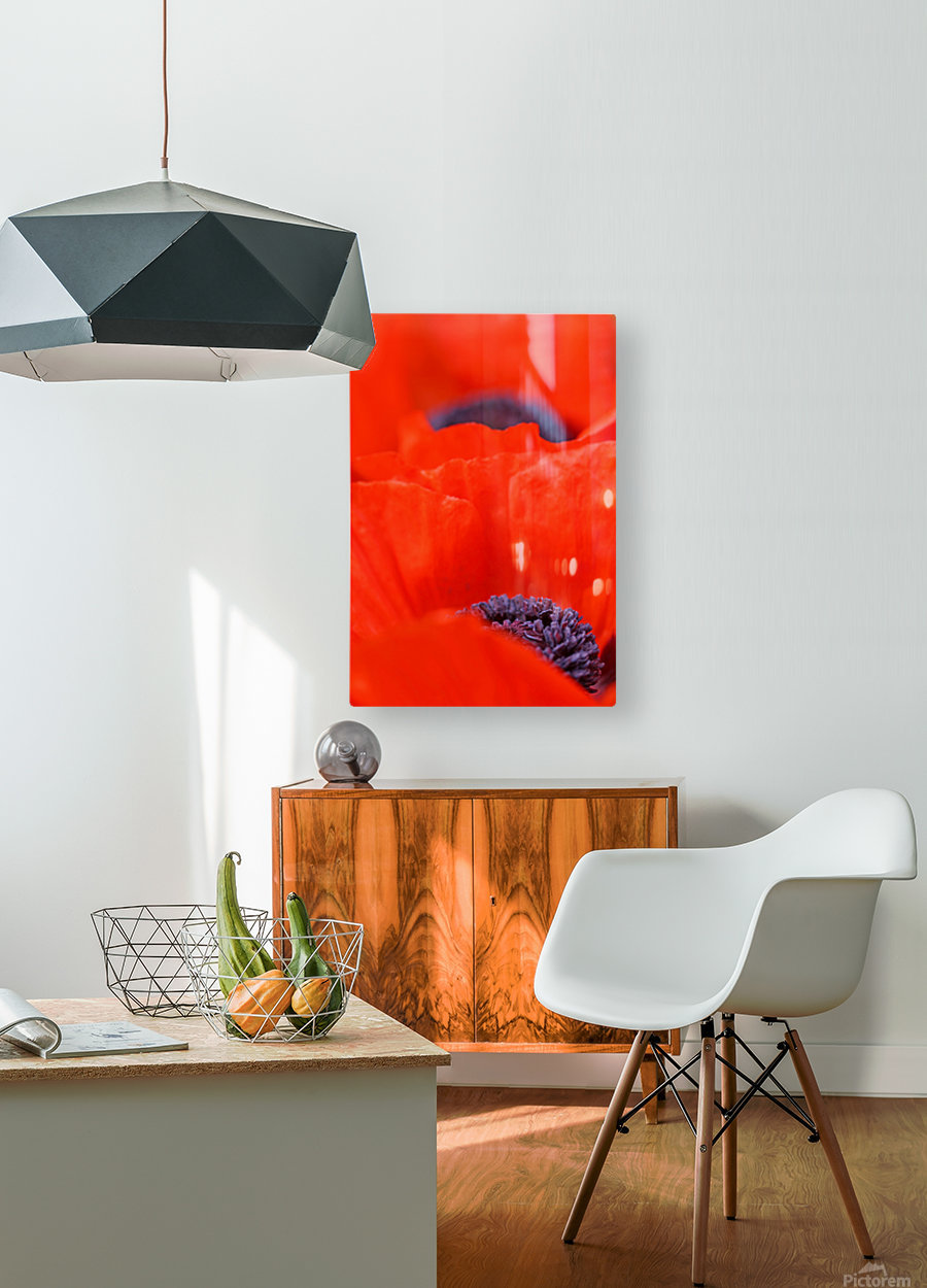 Poppy Heart I  HD Metal print with Floating Frame on Back