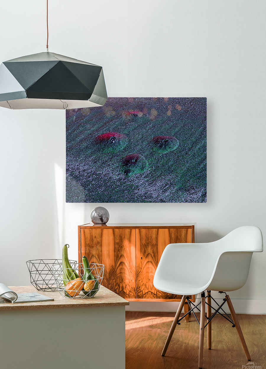 20180916_204111  HD Metal print with Floating Frame on Back