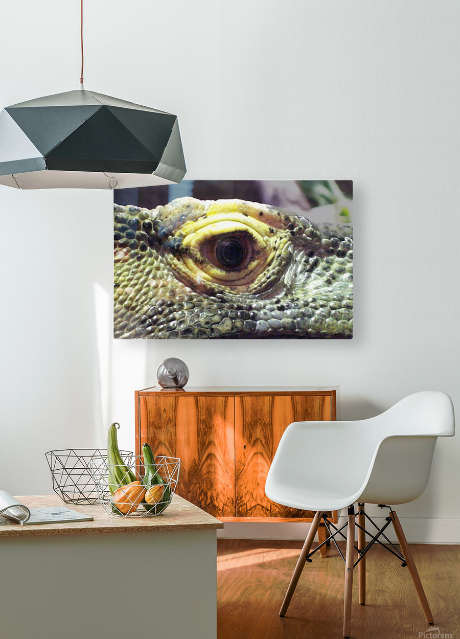 Scale  HD Metal print with Floating Frame on Back