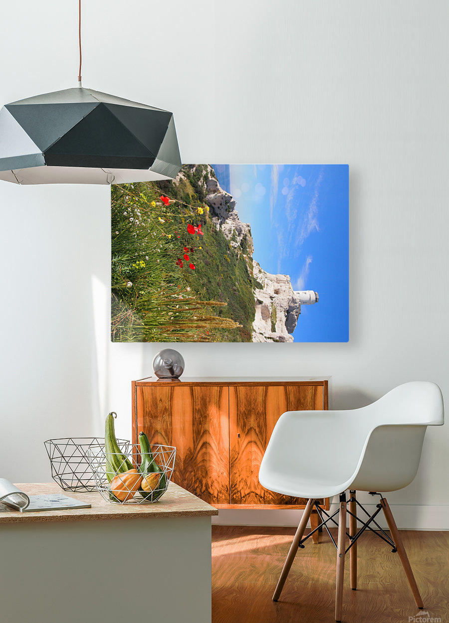 Abandoned  HD Metal print with Floating Frame on Back
