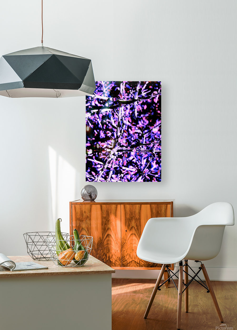 20181004_222321  HD Metal print with Floating Frame on Back