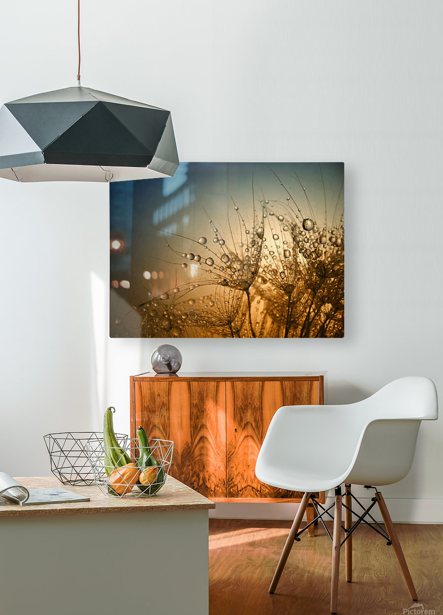 Tender is the Night  HD Metal print with Floating Frame on Back