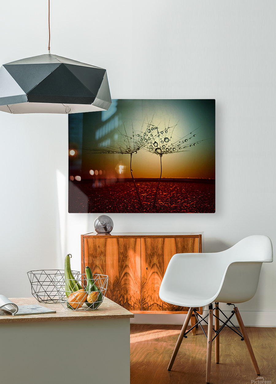 Fire and water  HD Metal print with Floating Frame on Back