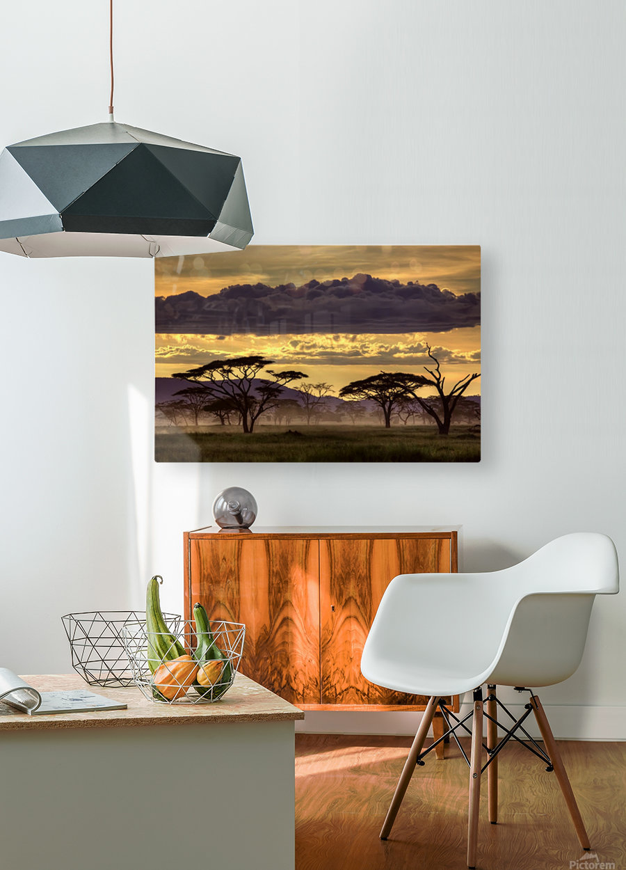 Good evening tanazania  HD Metal print with Floating Frame on Back